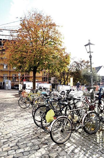 sprachschule in freiburg